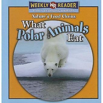 Mitä polaariset eläimet syövät