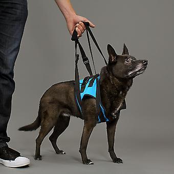 KVP Arnés De Movilidad Delantero L (Dogs , Collars, Leads and Harnesses , Harnesses)