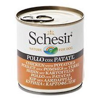 Schesir Chicken With potatoes (Dogs , Dog Food , Wet Food)