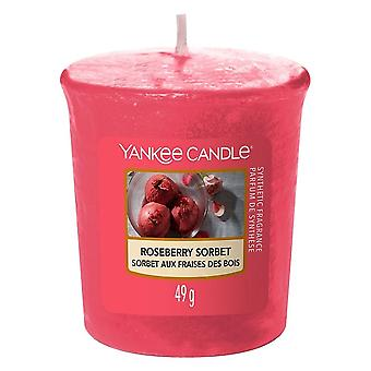 Yankee Candle Classic Votive Roseberry Sorbet
