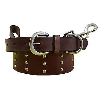 Bradley crompton genuine leather matching pair dog collar and lead set bcdc21purple