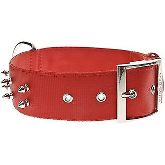 Ferribiella Ny Collar Stud Row  (Dogs , Collars, Leads and Harnesses , Collars)