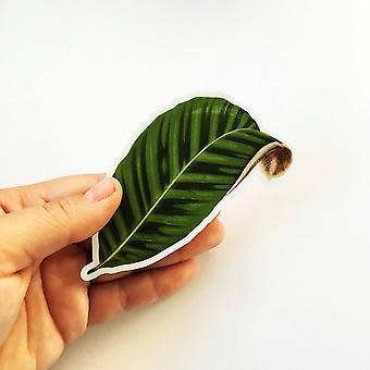 Calathea Leaf Vinyl Sticker
