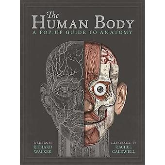 The Human Body A PopUp Guide to Anatomy