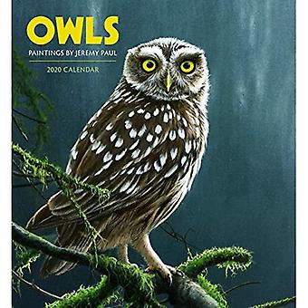 Owls: Paintings by Jeremy Paul 2020 Wall