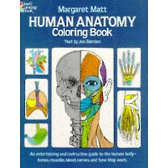 Human Anatomy by Margaret Matt - Joe Ziemian - 9780486241388 Book