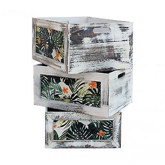 Muebles Rebecca 3 Cajas Caja de Frutas Verde Gris Madera Shabby 20x30x30