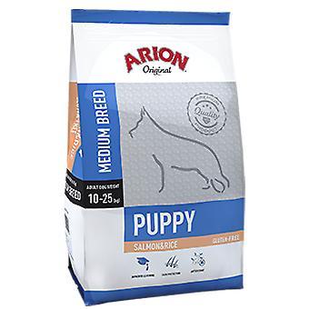 Arion Original Puppy Medium Salmon&Rice (Dogs , Dog Food , Dry Food)