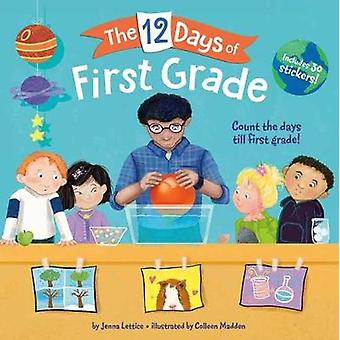 12 Days of First Grade by Jenna Lettice - 9781984896742 Book