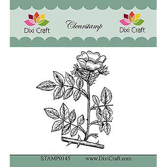 Dixi Craft Botanisk Samling 11 Klart Stempel