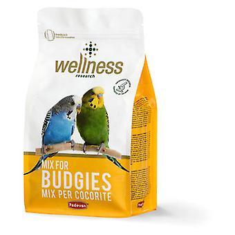 Padovan Feed Wellness Budgies (Birds , Bird Food)