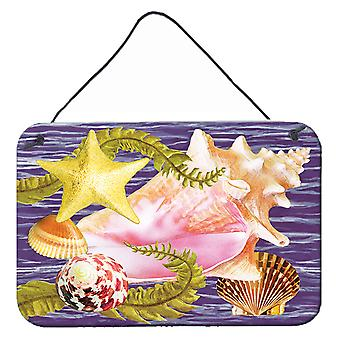 Carolines Treasures PRS4058DS812 Conch och sjöstjärna Vägg eller dörrhängning Prints