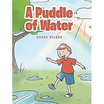 A Puddle of Water by Wanda Nelson - 9781645596462 Book