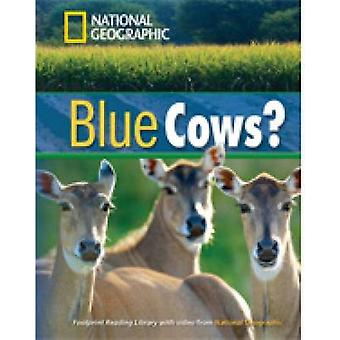 Blue Cows by Geographic & NationalWaring & Rob