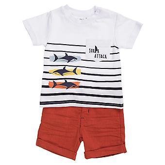 Conjunto de roupas babybol (2º) Ataque de tubarão