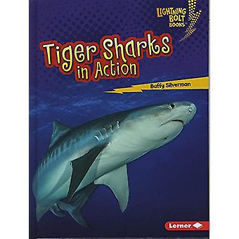 Shark World - Tiger Sharks in Action by Buffy Silverman - 978151243380