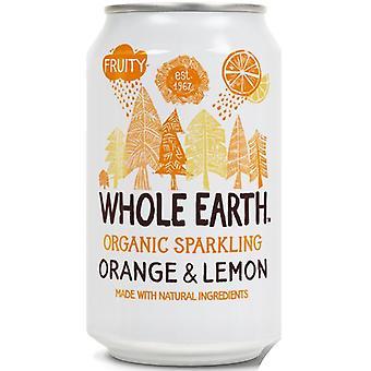 Hele aarde biologische sinaasappel en citroendrank 330ml x24