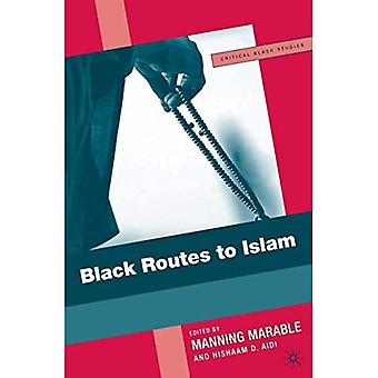 Black Routes to Islam (Critical Black Studies)