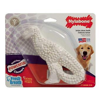 Nylabone Dinosaur Dental Dog Chew Chicken Flavor - 1 määrä