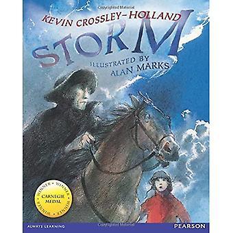 Wordsmith Year 3 Storm (Wordsmith (Literacy Service))
