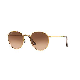 Ray-Ban Round Metal RB3447 9001/A5 Shiny Light Bronze/Brown Gradient Sunglasses