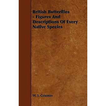 British Butterflies  Figures and Descriptions of Every Native Species by Coleman & W. S.
