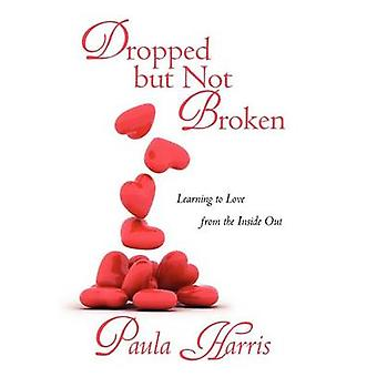 Dropped But Not Broken - Learning to Love from the Inside Out by Paula