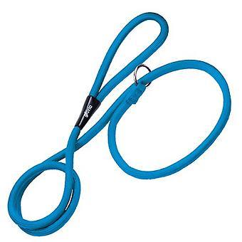 Gloria Pets Blue Training Collar and Leash