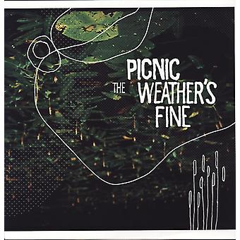 Picnic - Weather's Fine [Vinyl] USA import