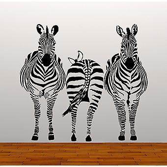 Set Of 3 Zebra Wall Stickers
