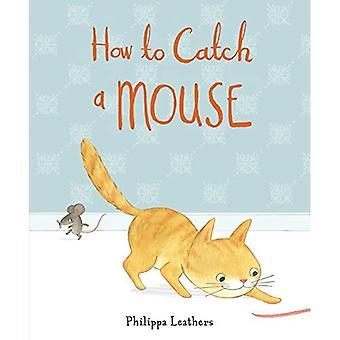 Hur att fånga en mus