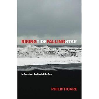 Risingtidefallingstar: på jakt efter själen i havet
