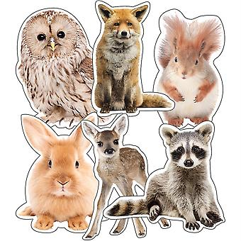 Woodland Whimsy Animals Cut-Outs, Pack Of 36