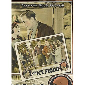 Ice Flood [DVD] USA import