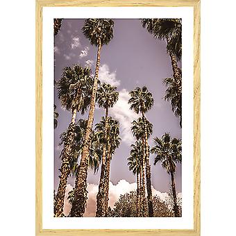 Affiche los angeles beverly hills
