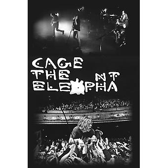Cage The Elephant 2 Live Pics Poster Poster Print