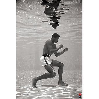 Muhammad Ali Underwater Poster Print (24 X 36)