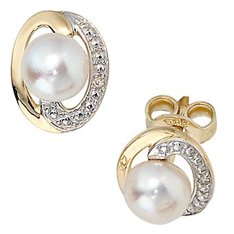 Earring Pearl Earring studs, 585 / - Gelbgold, part of rhodium-plated, 2 Freshwater Pearl, 2 diamond diamonds
