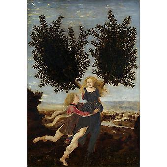 Apollo and Daphne,Antonio Pollaiuolo,60x40cm