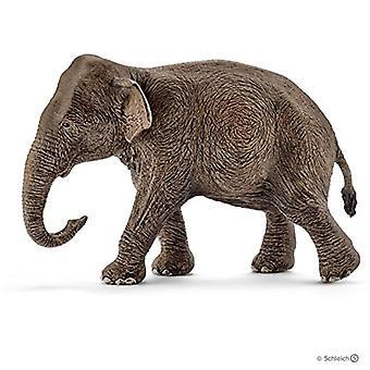 Schleich 14753 - vilda liv Asiatisk elefant, kvinna