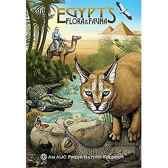 Flora dell'Egitto; Fauna