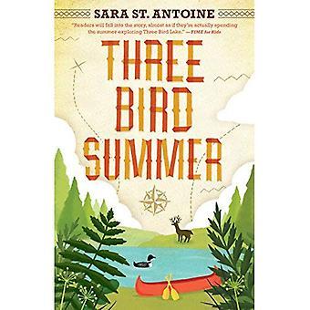 Trois oiseaux Summer