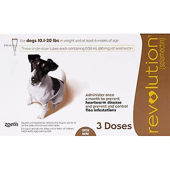 Revolution For Dogs 10-20lbs (5-10kg) - 3 Pack
