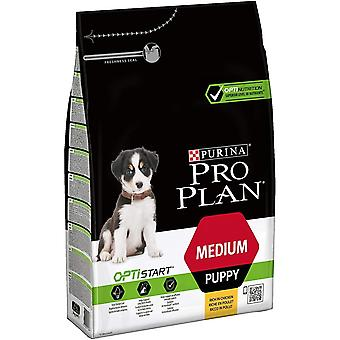 Pro Plan Medium Chicken And Rice Complete Dry Puppy Food