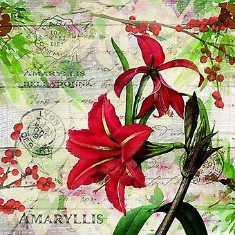 CraftEmotions المناديل 5pcs -- الأحمر Amaryllis 33x33cm Ambiente 33310630
