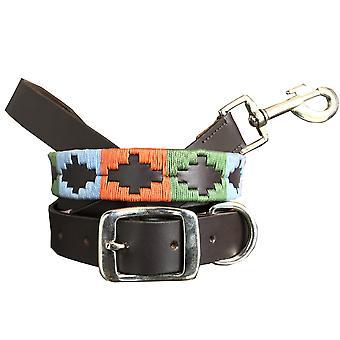 Carlos diaz genuine leather  polo dog collar and lead set cdkupb467