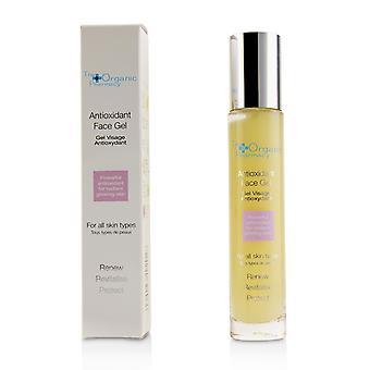 Antioxidant face gel 221203 35ml/1.1oz