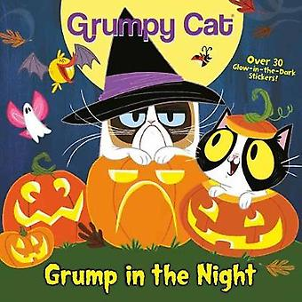 Grump in the Night by Celeste Sisler - 9781984851376 Book