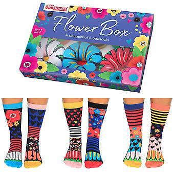 المتحدة Oddsocks زهرة مربع الجوارب هدية مجموعة للنساء