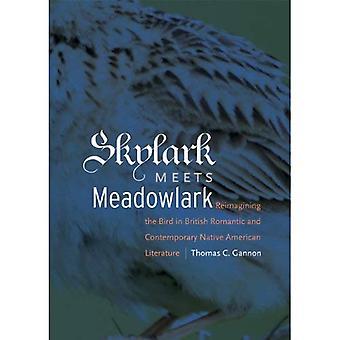 Skylark Meets Meadowlark: Reimagining des Vogels in der britischen romantische und zeitgenössische indianische Literatur